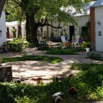 Courtyard for our Coues Deer Hunts and Goulds Turkey Hunts